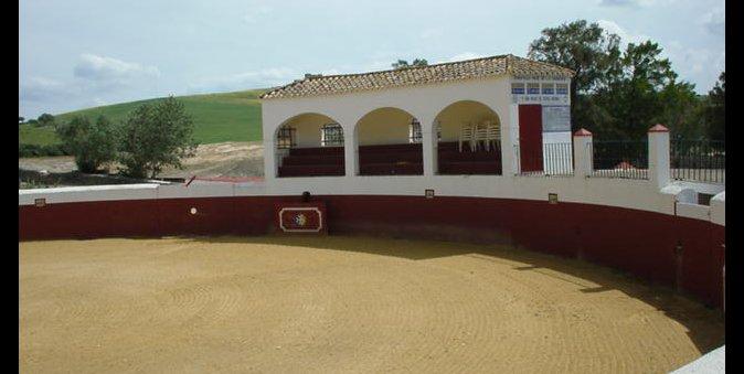 Plaza de toros Los Alburejos
